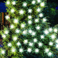 Gardman Solar Extra Large Bulb Garden String Lights